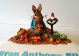 Peter Rabbit Cake - Quality Cake Company Tamworth
