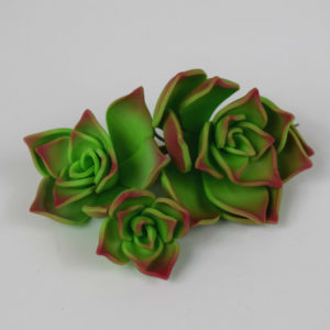 Succulents green cake topper modern Tamworth