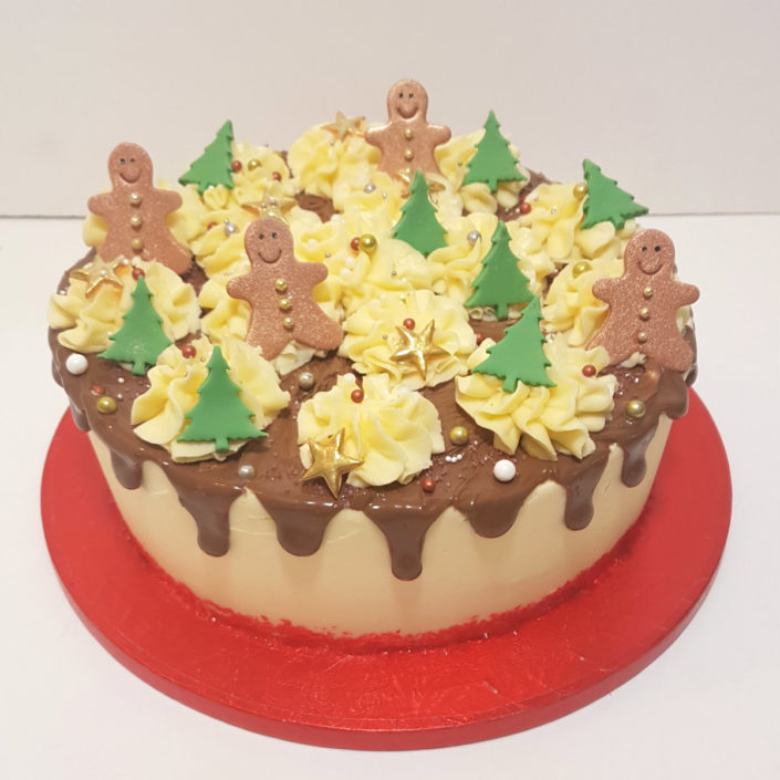Christmas chocolate drip cake - Tamworth