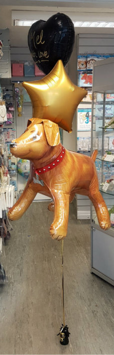 Dog novelty helium balloons - Tamworth