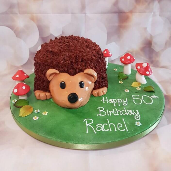 Hedgehog novelty birthday cake - Quality Cake Company Tamworth