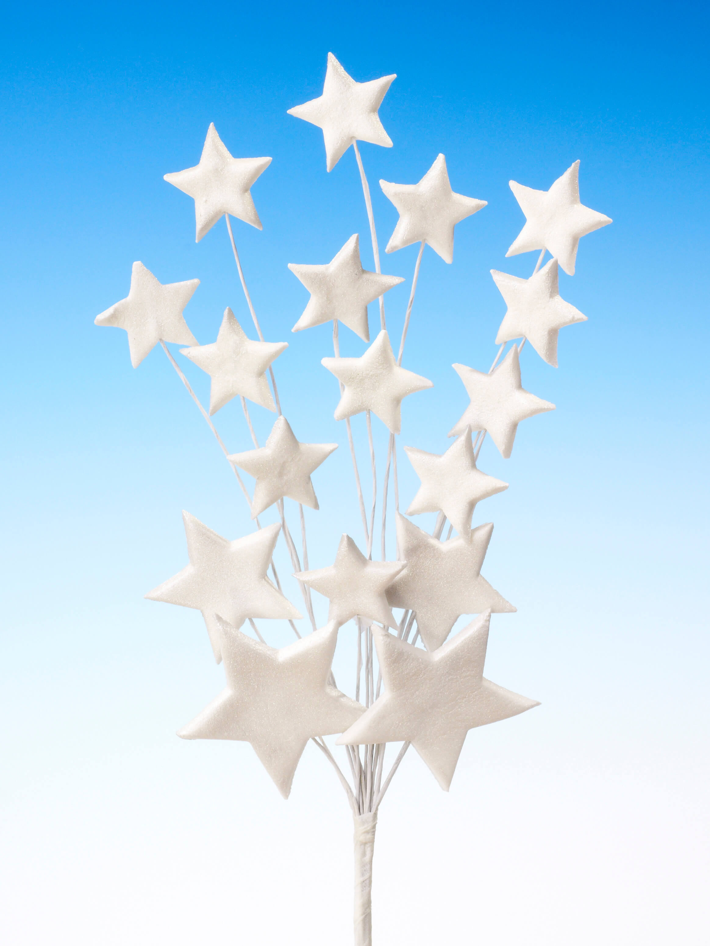 Silver star spray icing cake decoration - Tamworth, West Midlands