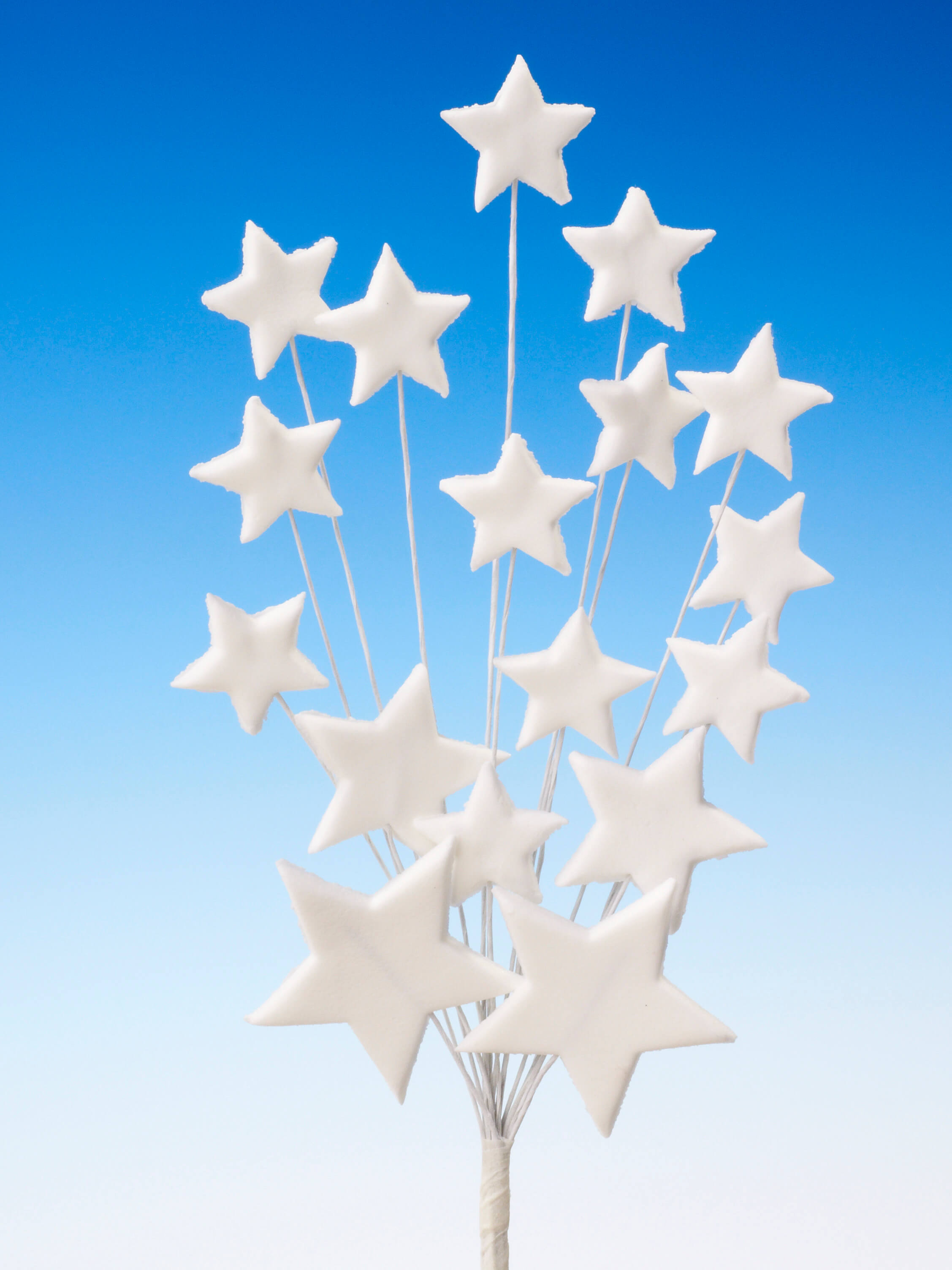White star spray icing cake decoration - Tamworth, West Midlands
