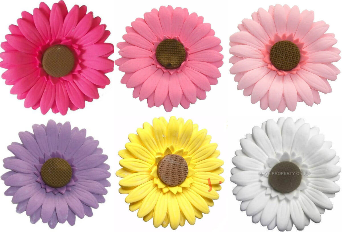Gerbera head flower icing cake decorations - Tamworth West Midlands