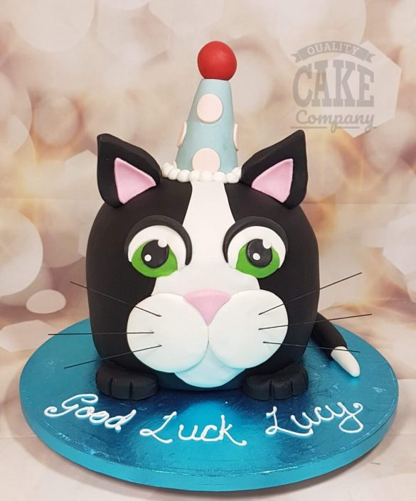 Novelty black white cat sculpted cake wearing party hat - Tamworth west midlands