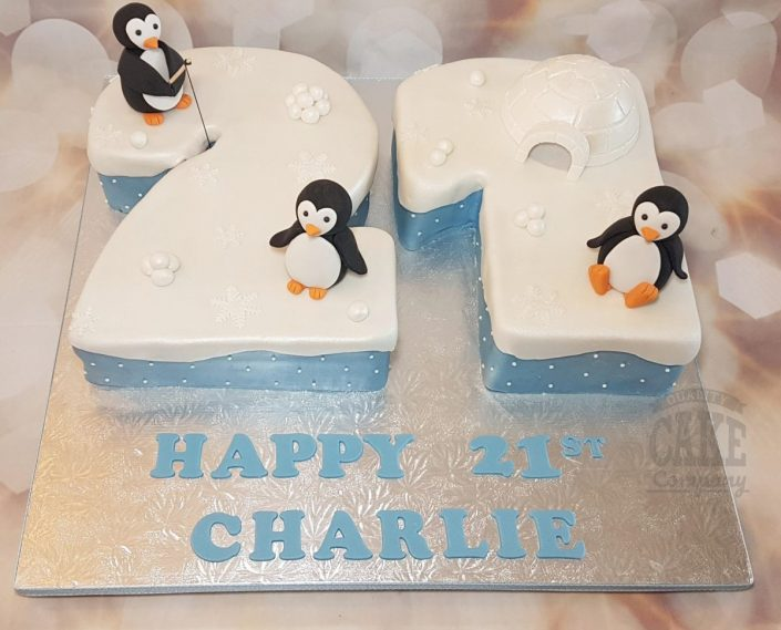 21st birthday penguin party cake - tamworth