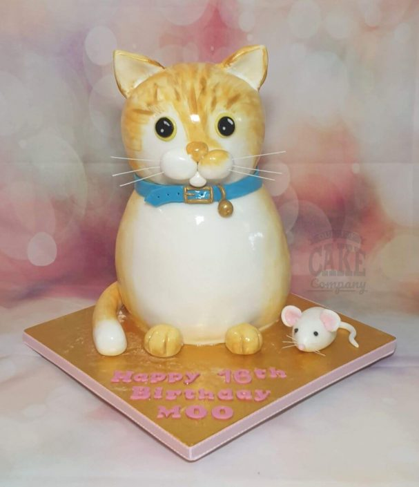 novelty sculpted ginger cat cake tamworthh
