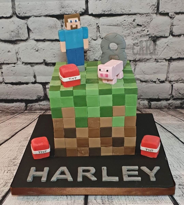 Minecraft blocks and figures children's birthday cake - Tamworth