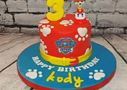 Simple Paw Patrol children's birthday cake - Tamworth