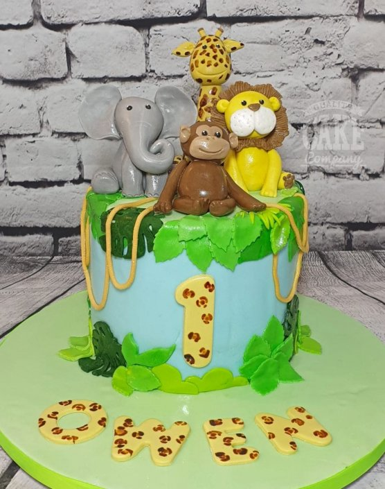 Cute jungle animals theme cake -1st birthday - Tamworth